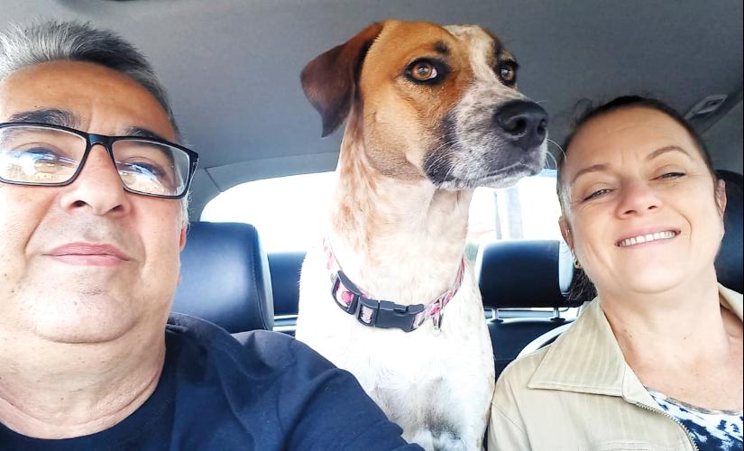 Fiel, cadela faz parte de família