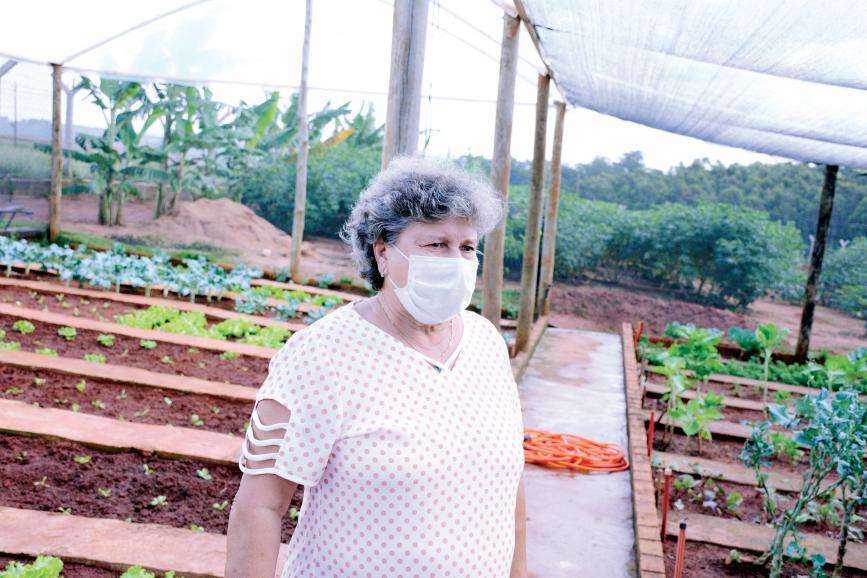 Graça Pimentel, viúva do professor Eduardo Pimentel, é voluntária na Fazenda