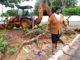 RESSARCIMENTO — Em maio do ano passado, Noemi Claudino acompanha a retirada da árvore que provocou rachaduras em sua residência